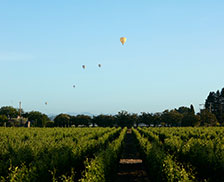 SENZA Hotel - Floating Hot Air balloons over vineyards