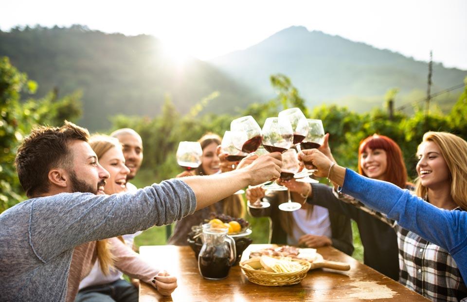 Yountville Wine Tasting in California