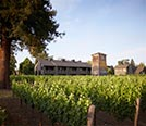 Where are the best Napa wineries to visit?