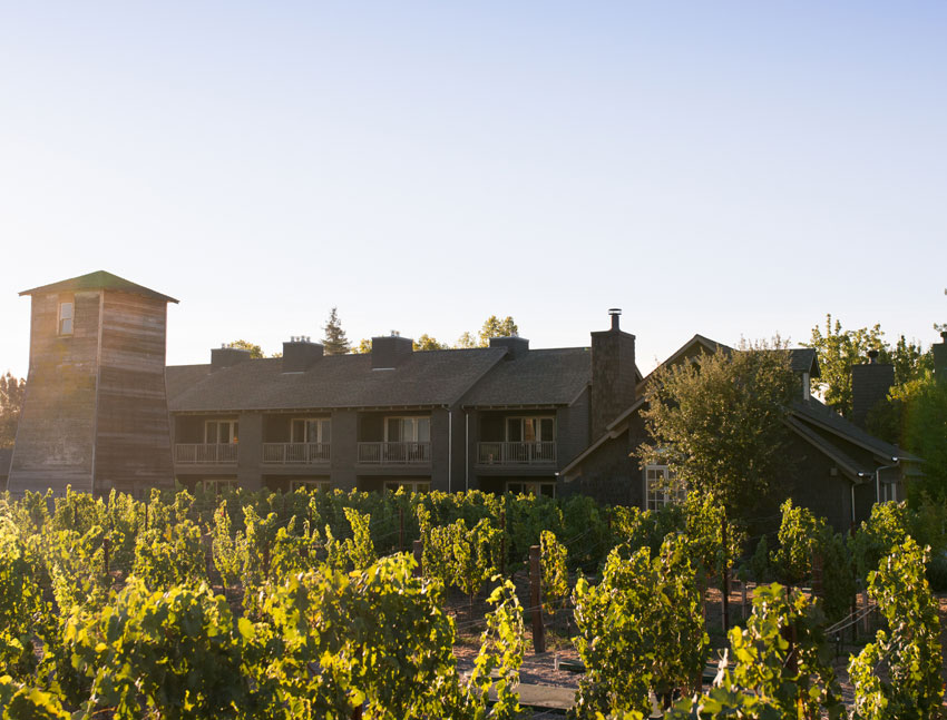 SENZA Hotel, Napa is Steps From The Vines