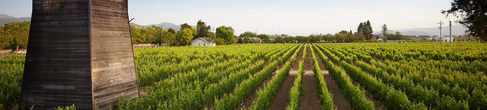 Know about SENZA Hotel, Napa