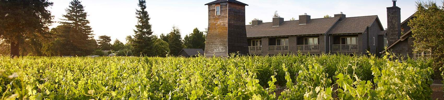 Napa, California nearby Attractions & Wineries