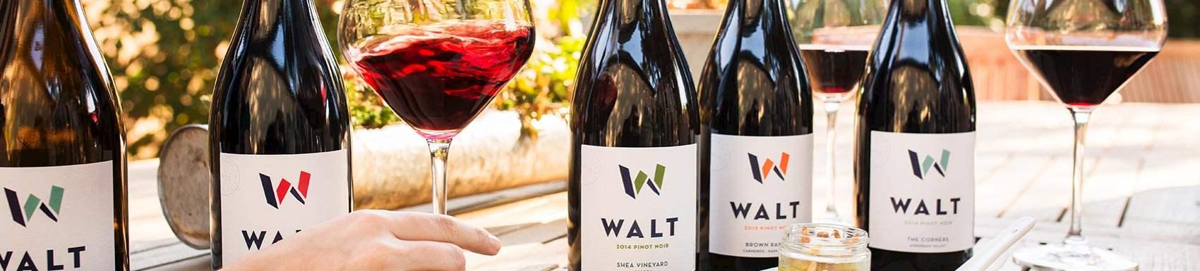 WALT - Sonoma in Napa, California